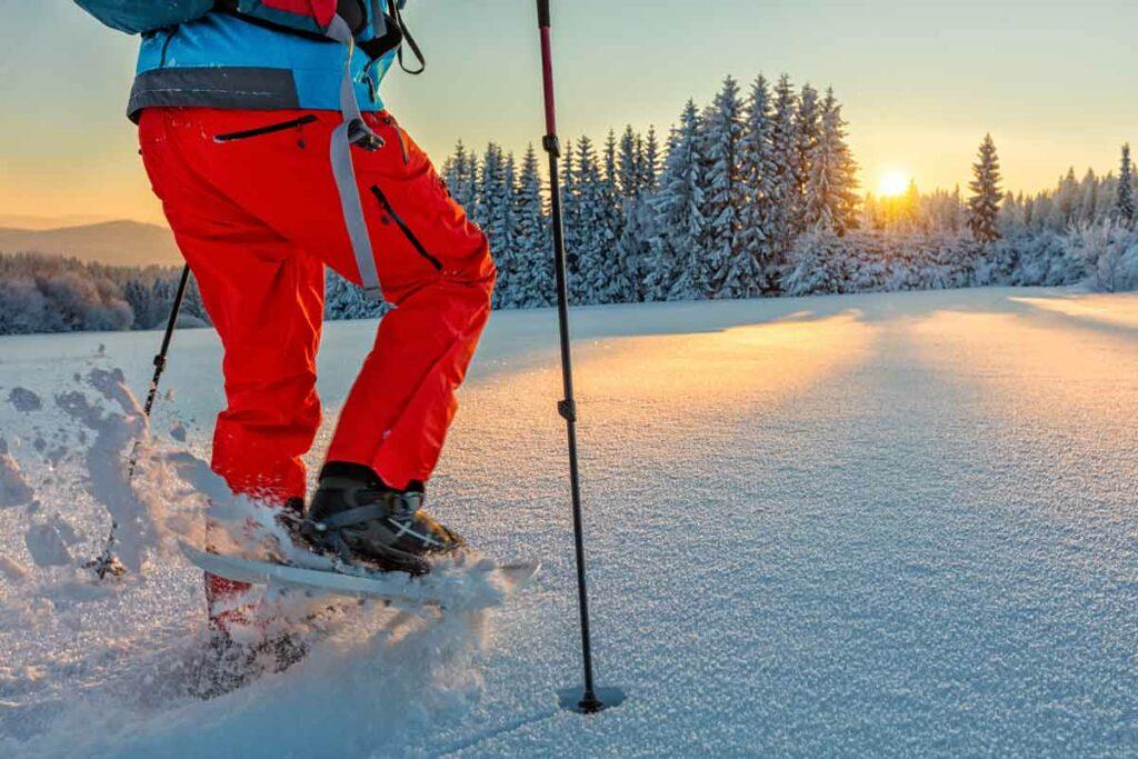Schneeschuh und wandern